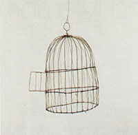 Cage, 1995 by Vik Muniz